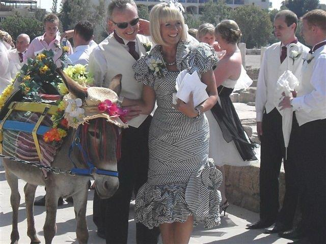 donation donkey wedding3-14-6-10.jpg - 102.85 Kb